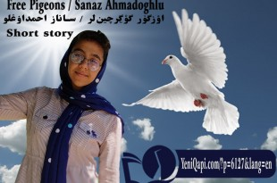 Free Pigeons- Sanaz Ahmadoghlu -short story-
